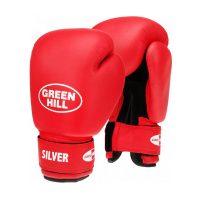 Перчатки боксерские тренировочные SILVER