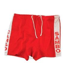шорты для самбо детские